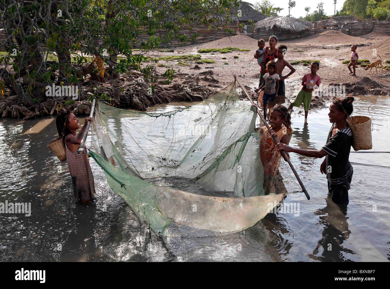 Children fishing with a net, near Liquica, Timor Leste (East Timor) - Stock Image