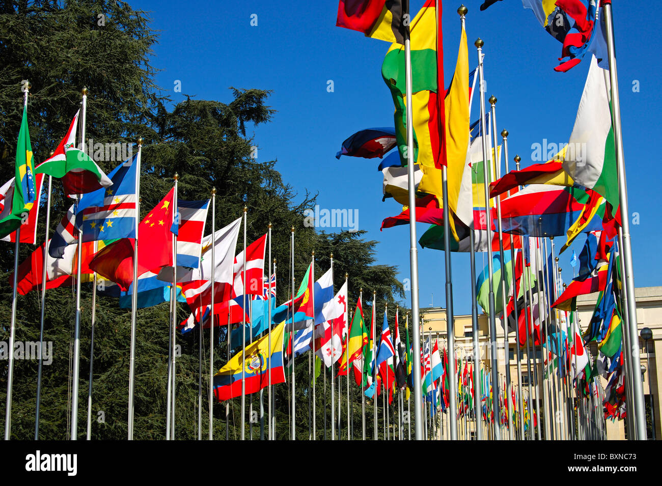 Flags from all countries around the world, Court of flag, United Nations, UNO, Palais des Nations, Geneva, Switzerland - Stock Image