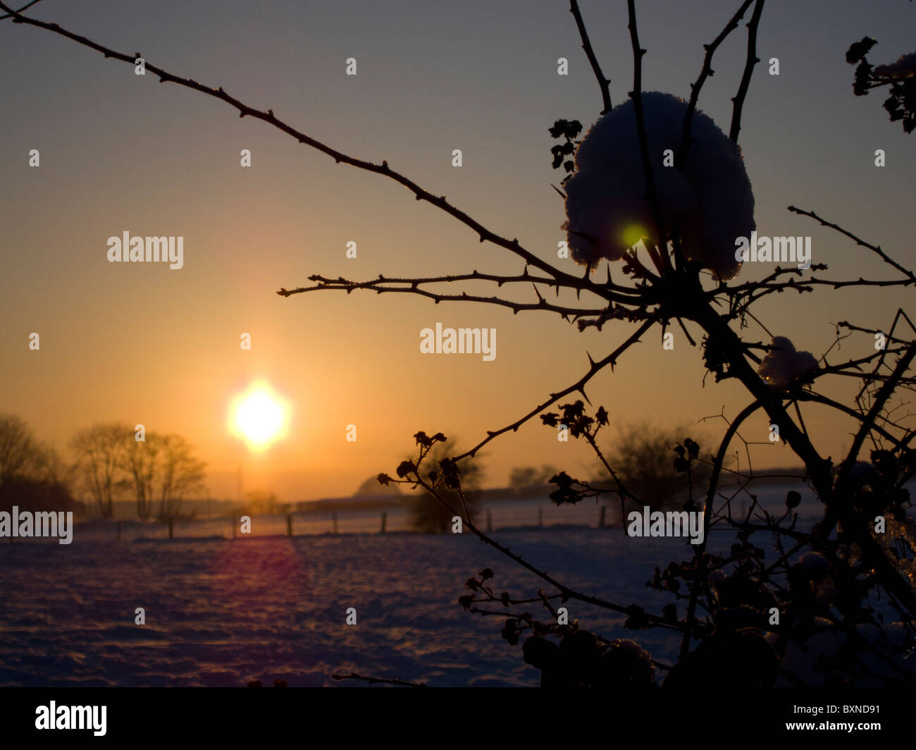 Christmas day 2010 in Worcestershire, England. Sunsetting in the frozen snowy countryside silhouetting the hedgerow. - Stock Image
