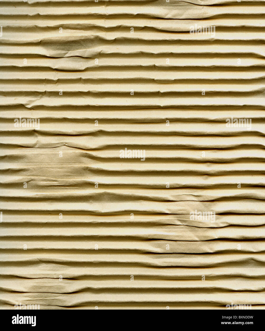 Textured corrugated striped cardboard with natural fiber parts - Stock Image