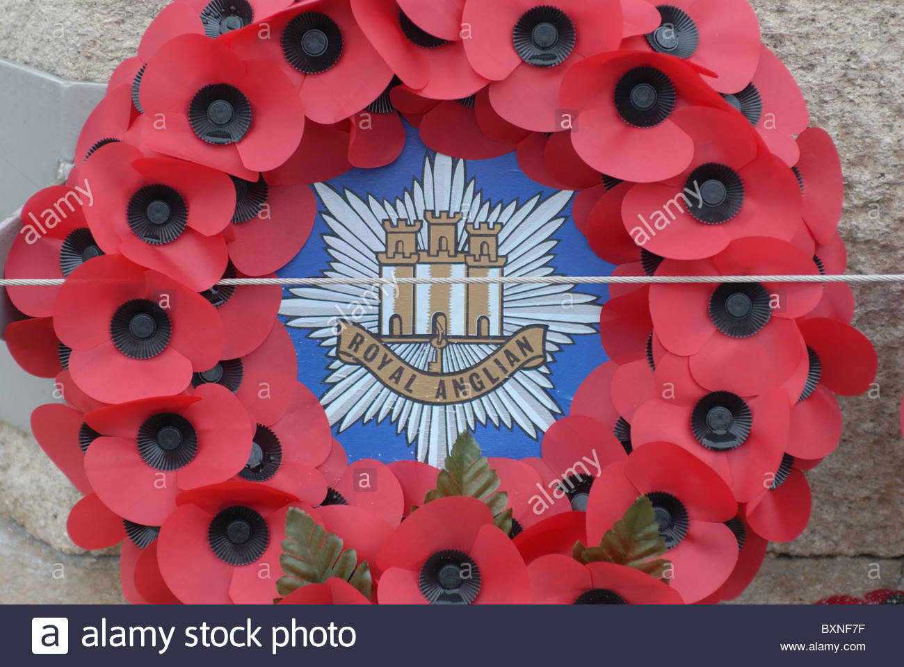 Bury St. Edmunds Suffolk, UK. Poppies on the war memorial from the Royal Anglian regiment. - Stock Image