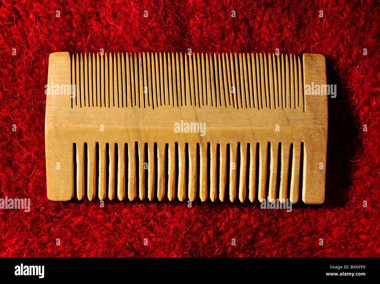 Wooden nit comb, The Mary Rose Museum, Portsmouth Historic Dockyard, Hampshire, Britain, UK - Stock Image