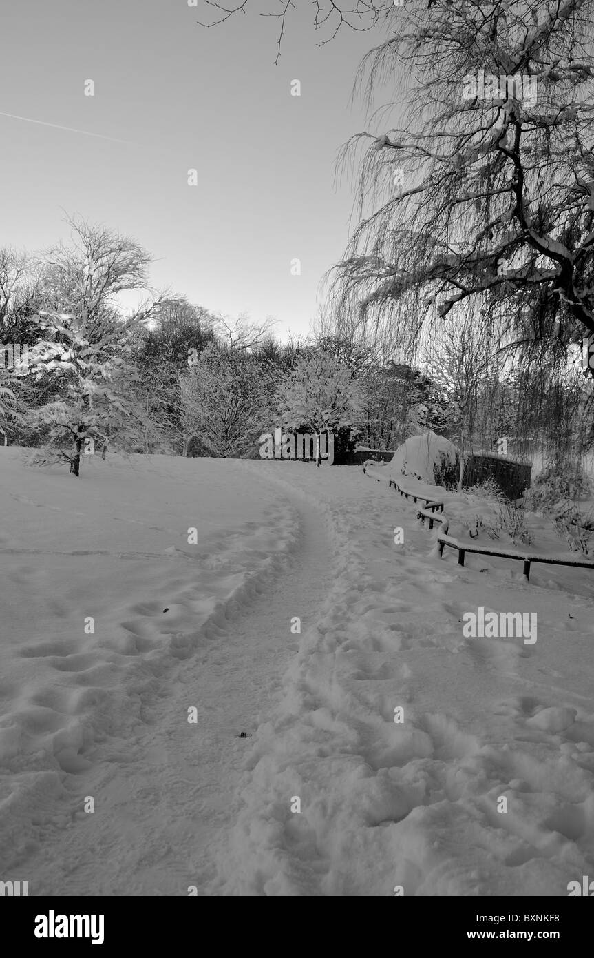 pathway in the snow - black and white - Stock Image