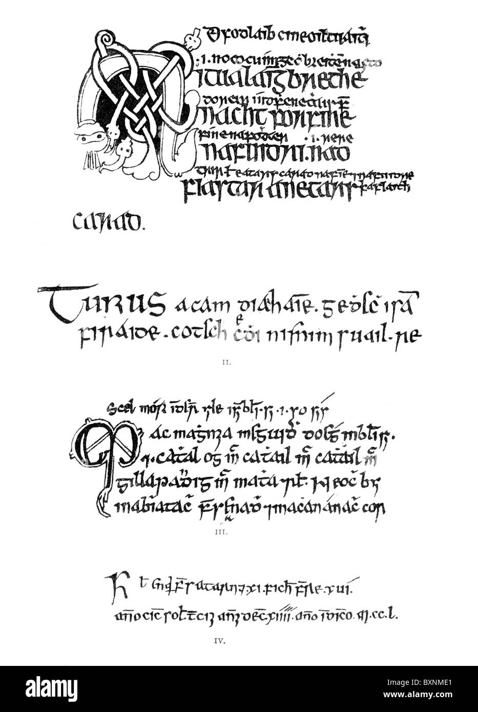 Specimins of Irish writings between 1300 and 1588, Black and White Illustration; - Stock Image