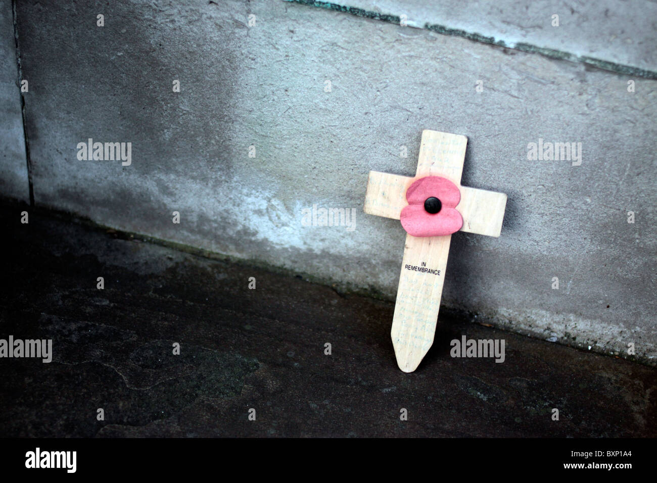 Faded poppy at Tower Hill Memorial in London - Stock Image