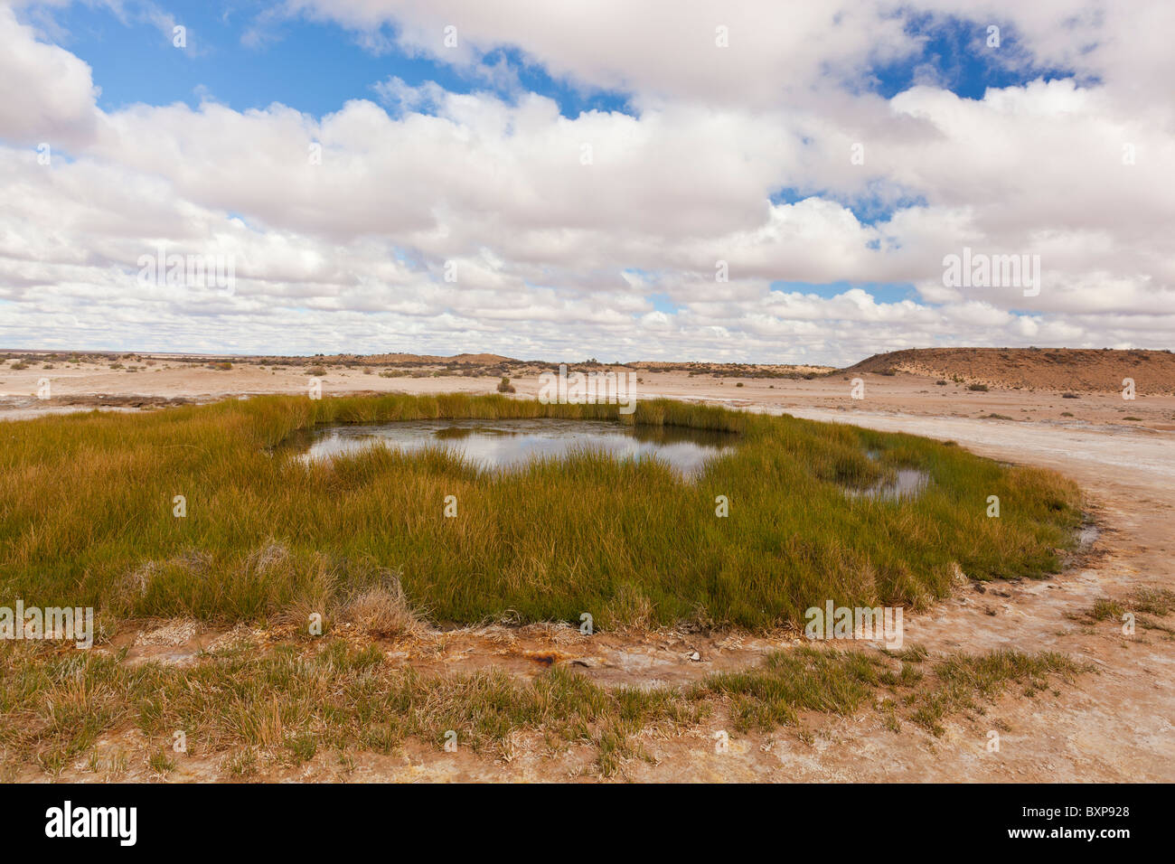Blanche Cup Mound Spring on the Oodnadatta Track in South Australia's Outback Stock Photo