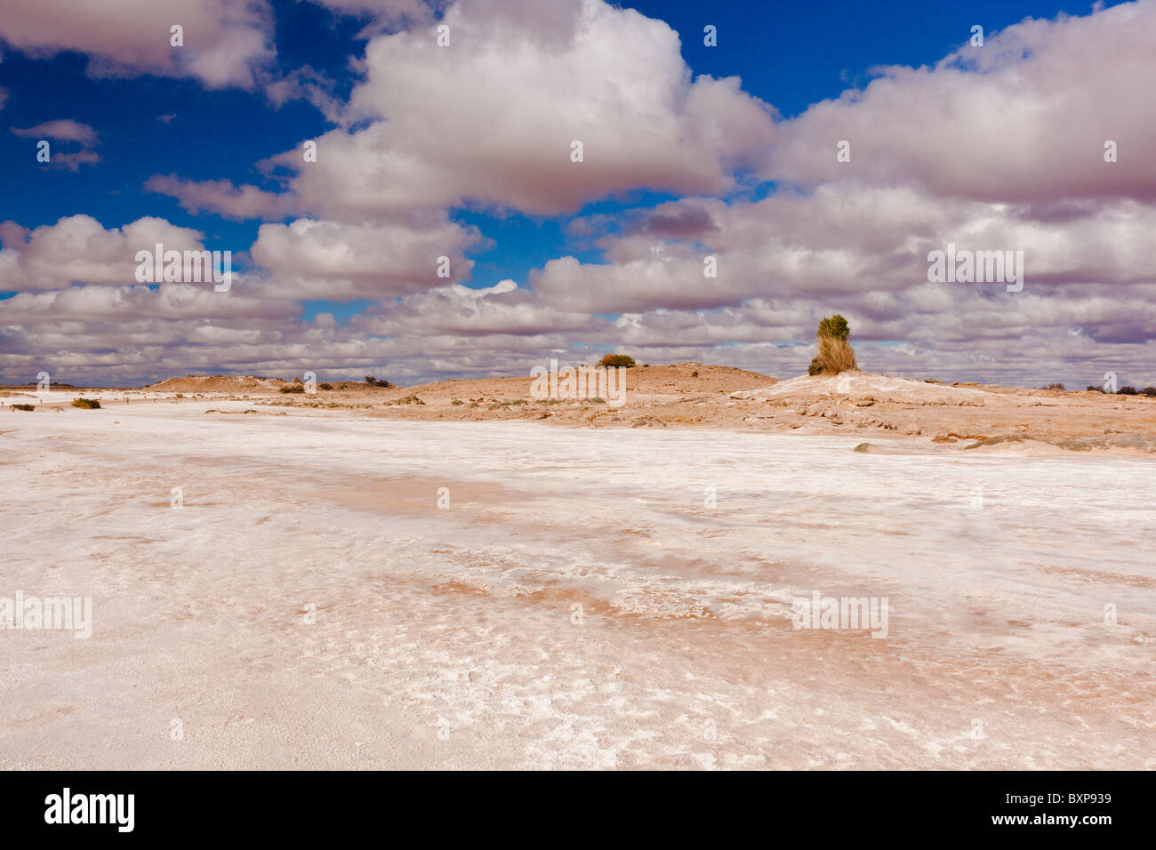 Salt Flats near Blanche Cup Mound Spring on the Oodnadatta Track in South Australia's Outback Stock Photo