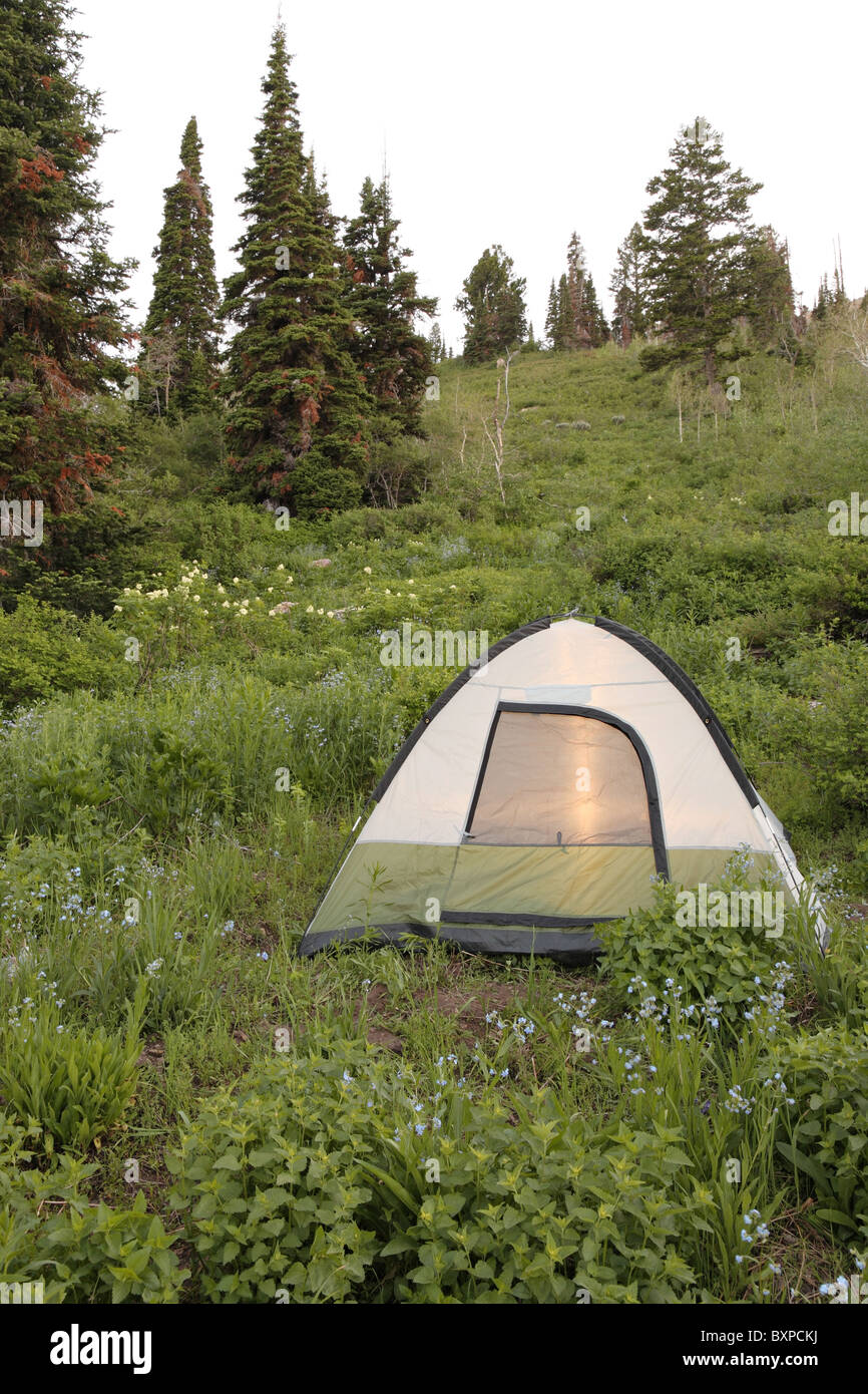green and white tent pitched on lush green mountain hillside - Stock Image