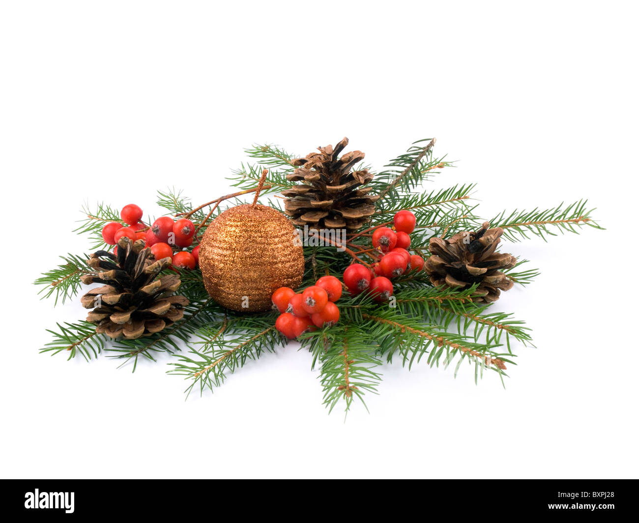 Sparkling candle, rowan, cones and fresh spruce on white background - Stock Image