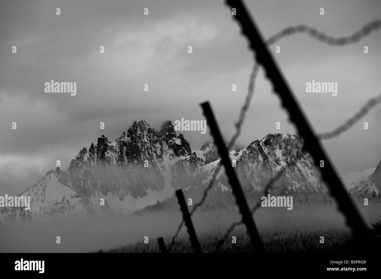 Old Fence Post Barbed Wire Black And White Stock Photos