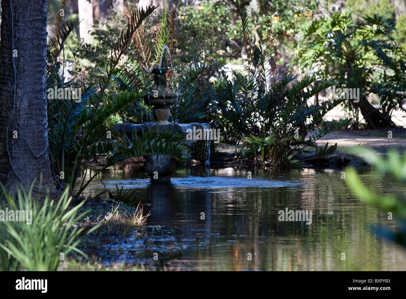 Three tier fountain located in scenic Washington Oaks garden State park in Florida. - Stock Image