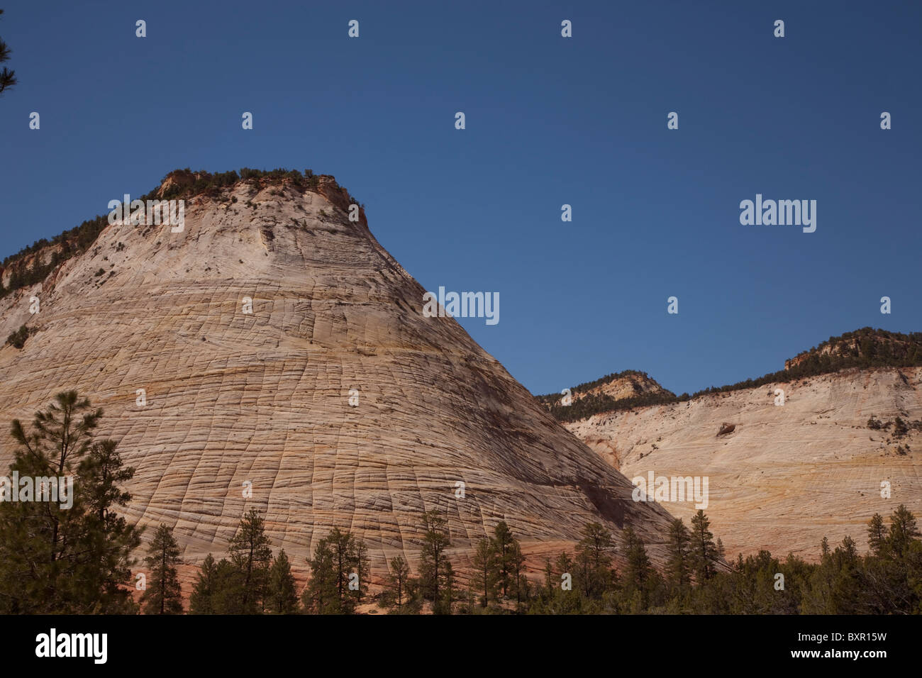 Checkerboard Mesa in Zion Canyon National Park in Utah USA on a sunny summer day - Stock Image