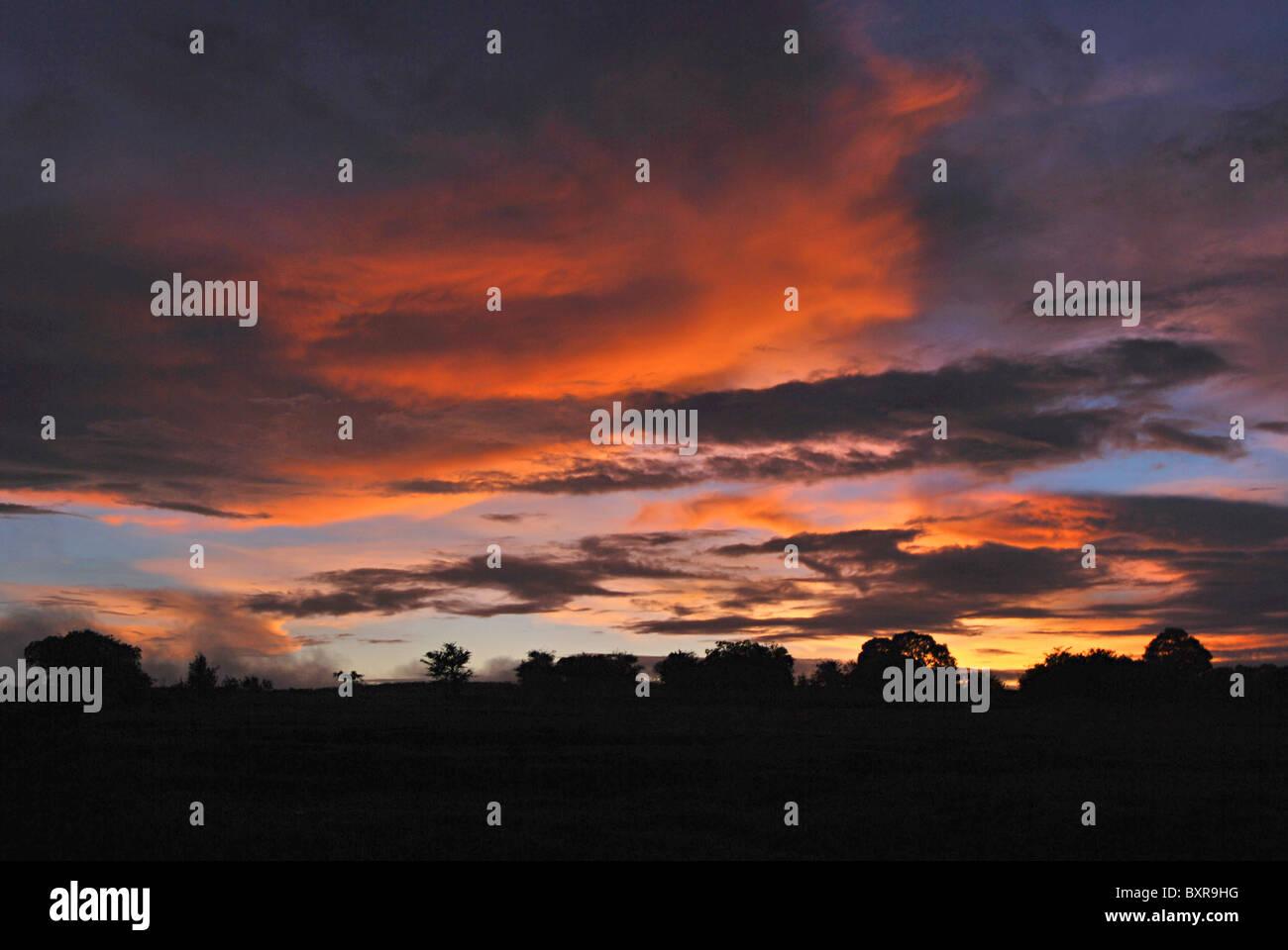Evening sky at kaas. Location: Kaas plateau (Satara) - Stock Image