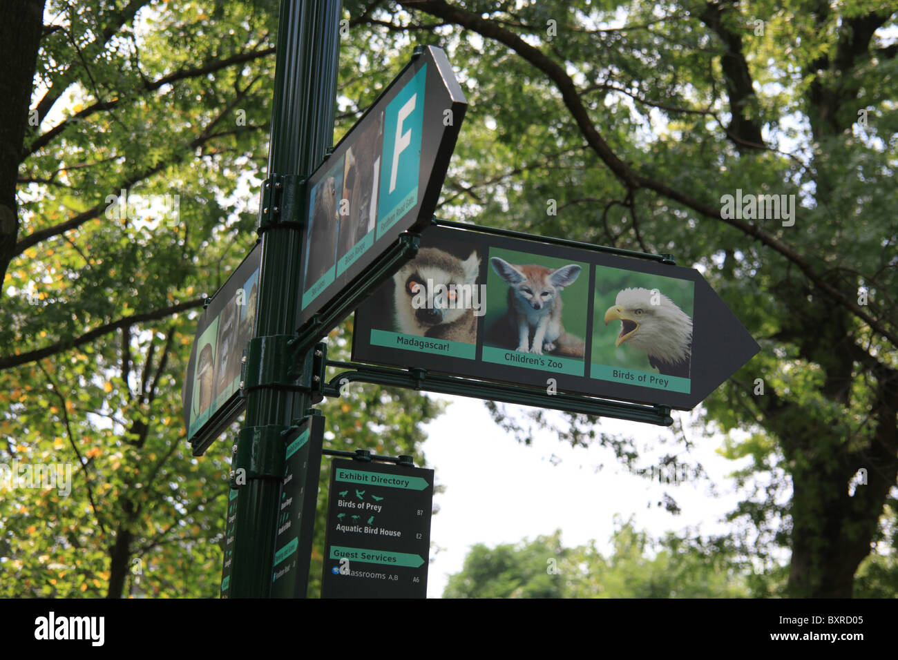 Directional Signs Guiding Visitors To Exhibits At The Bronx Zoo