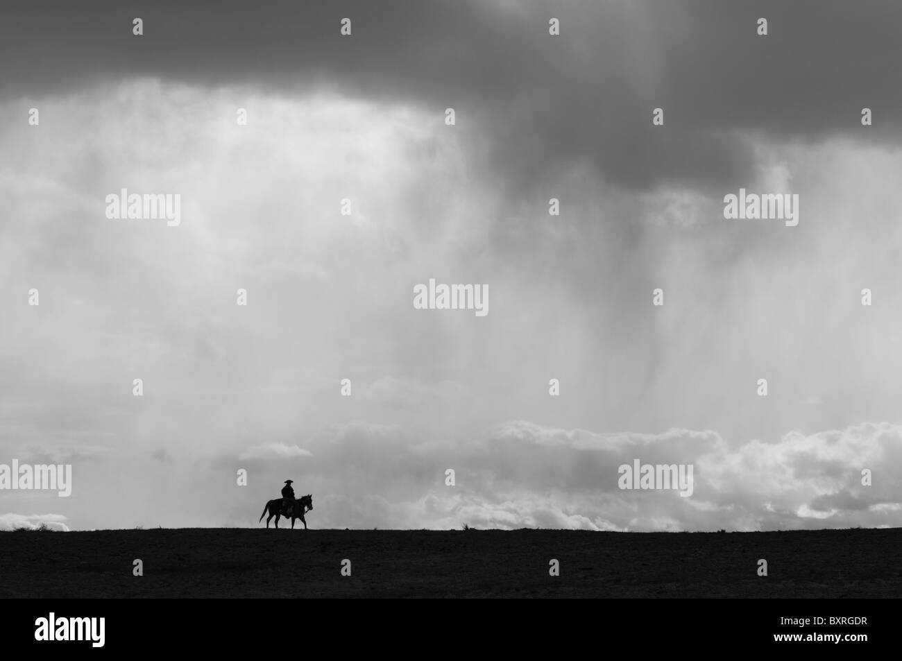 silhouette of a lone horse and rider beneath a big sky - Stock Image