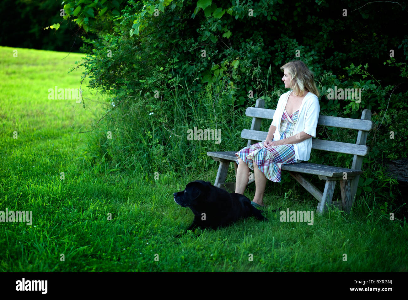 Woman sitting on bench with black Labrador dog beside - Stock Image