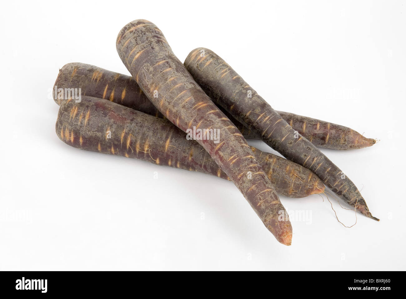 Close-up of five purple carrots Stock Photo