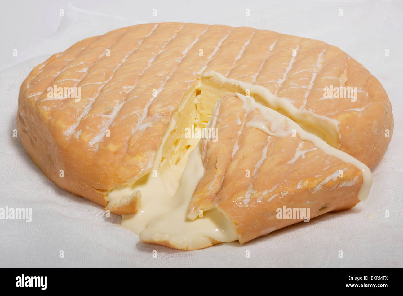Australian Jensen's Red Washed Rind cow's milk cheese - Stock Image