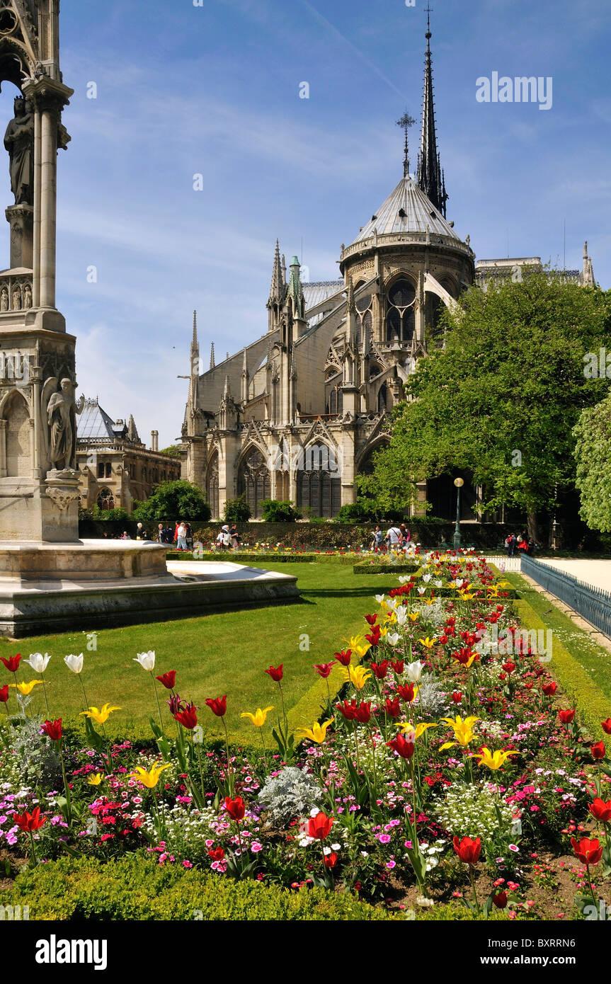 Notre Dame Cathedral, Île de la Cité, Paris, Île-de-France, France, Europe Stock Photo