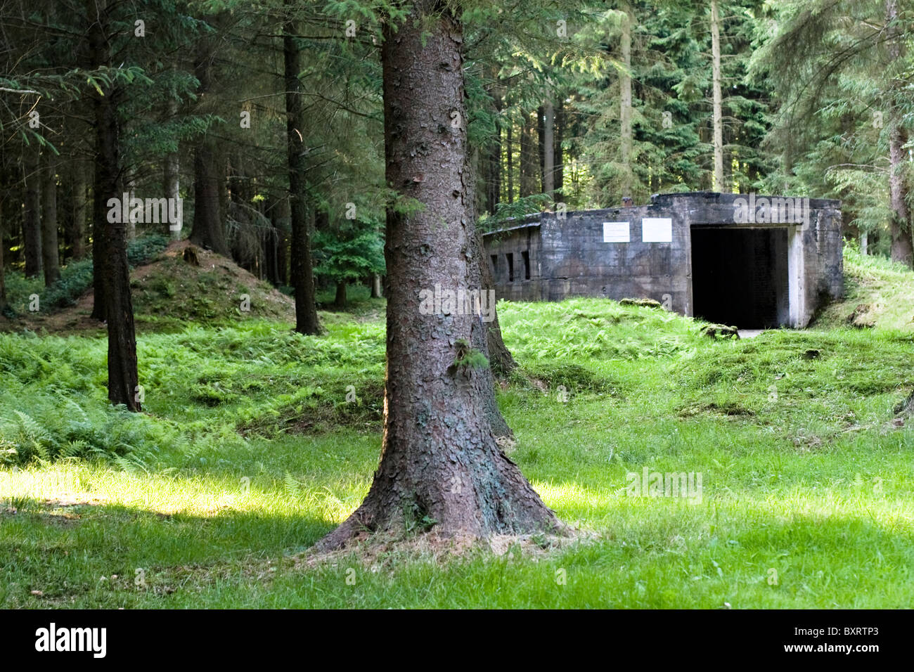 France, Normandie, View of bunker in forest - Stock Image