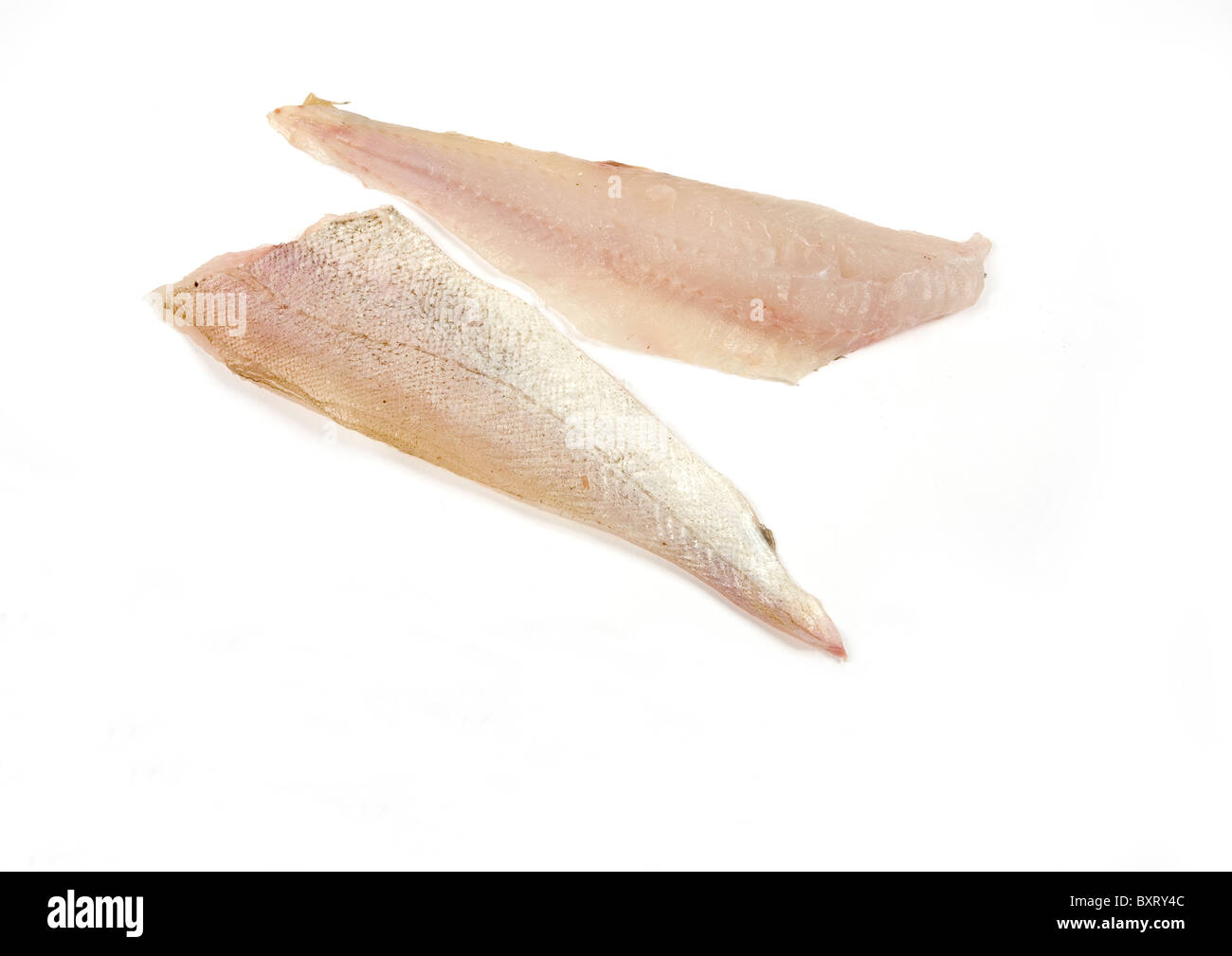 Whiting fillets - Stock Image