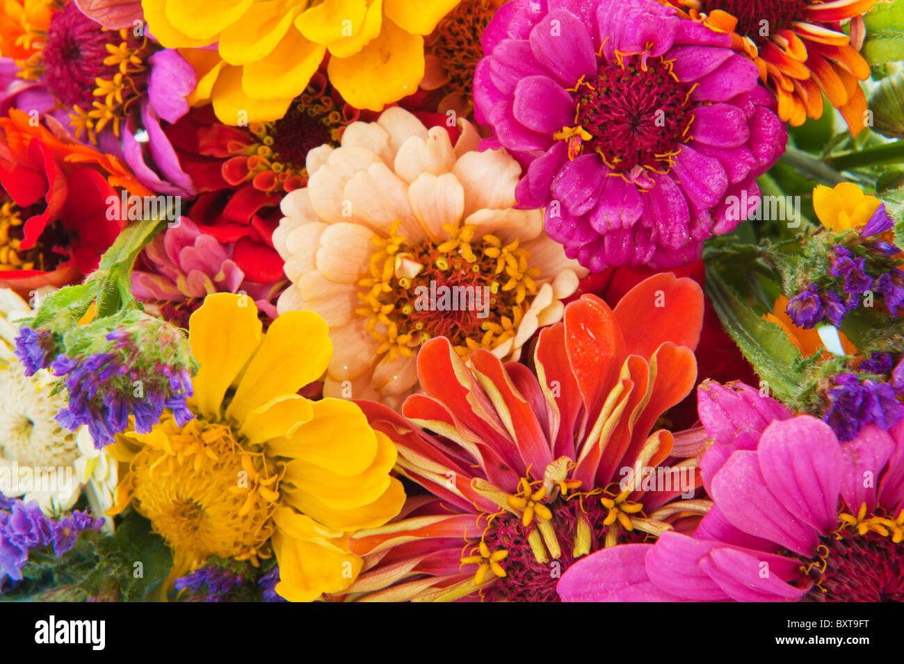 colorful flower bouquet with many different mixed flowers Stock ...