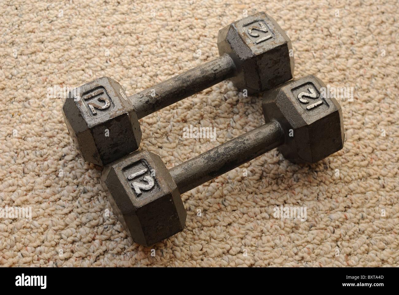 12 pound dumb bells on carpet - Stock Image