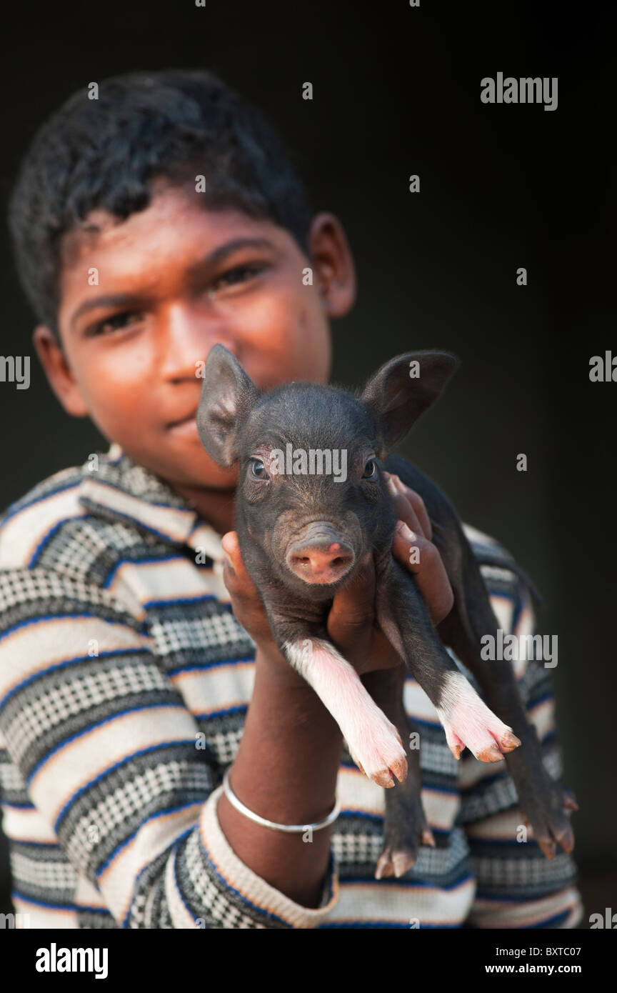 Lower caste Indian boy with small pig which is reared by him and sold for meat when fully grown. Andhra Pradesh, - Stock Image