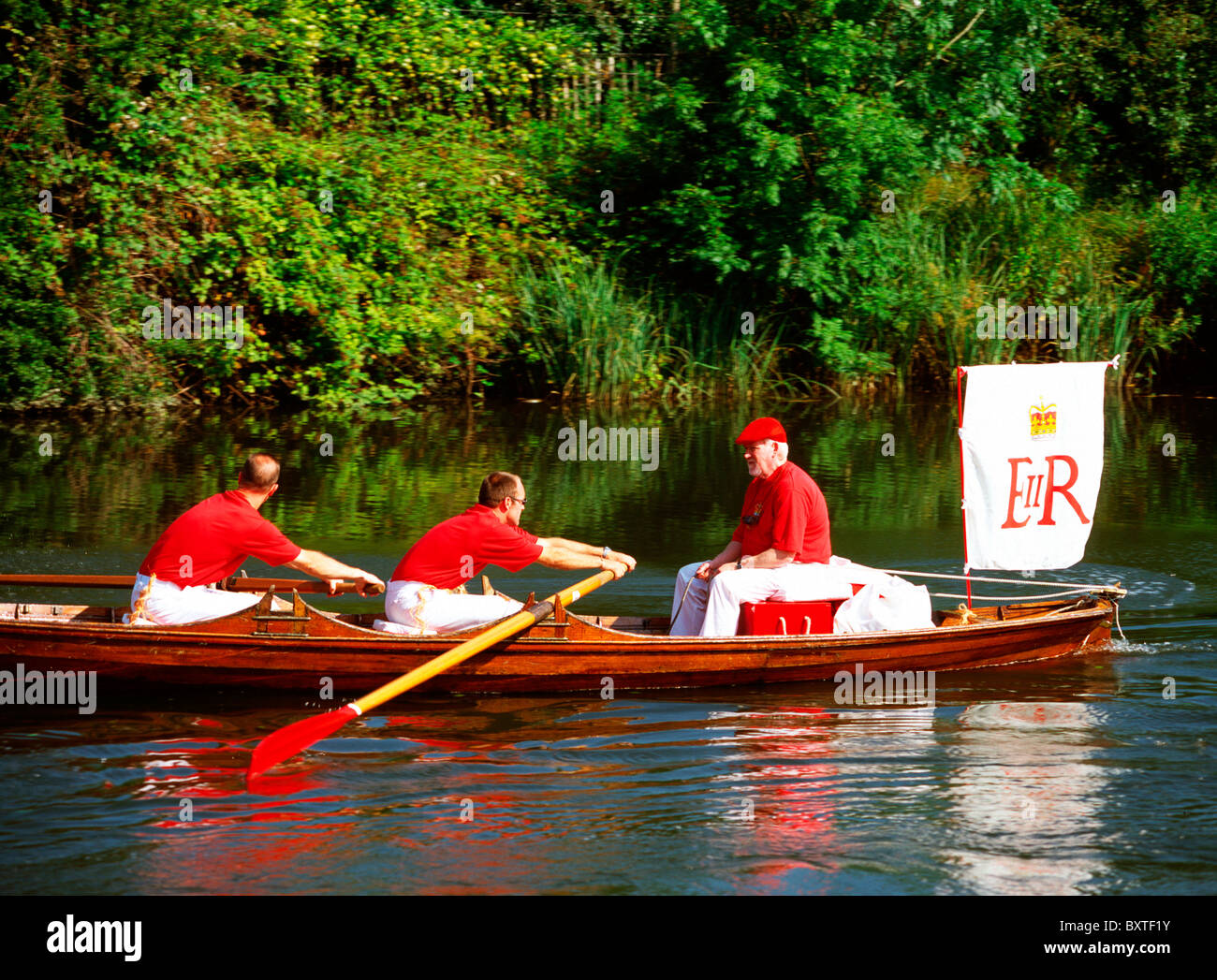 Swan Upping, River Thames - Stock Image