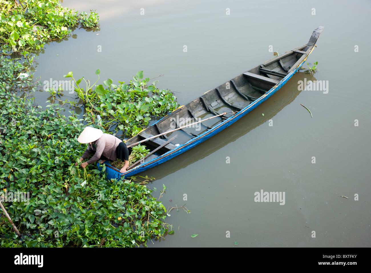 canoe, Mekong Delta, Chau Doc, Vietnam - Stock Image