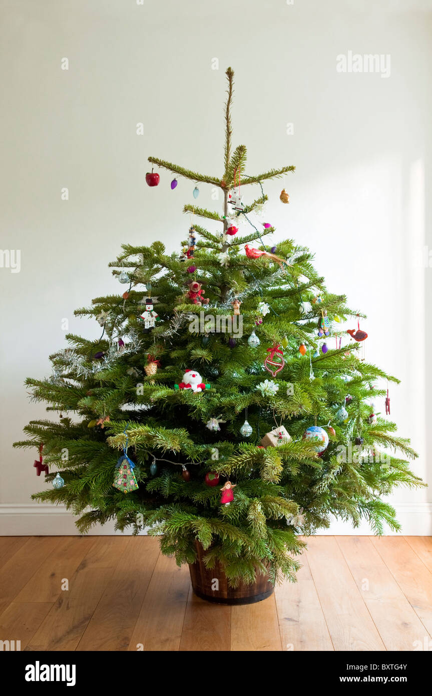 A Whole Real Decorated Christmas Tree On Wooden Floor With Neutral Background UK