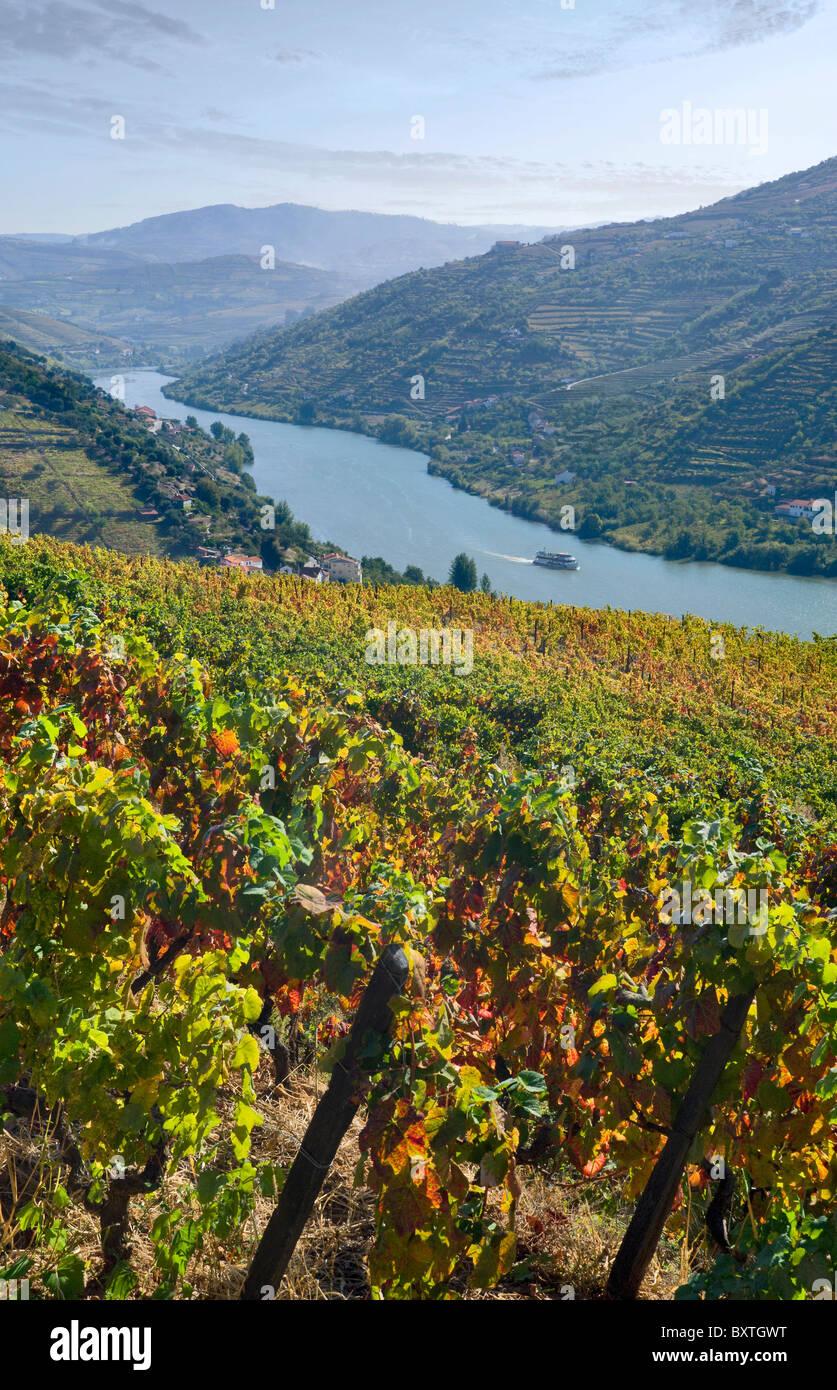 Portugal, The Alto Douro, Douro Valley, Mesao Frio Near Regua - Stock Image