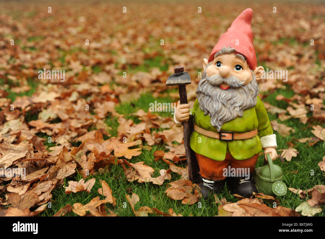 Garden Gnome Leaves Stock Photos & Garden Gnome Leaves Stock Images ...