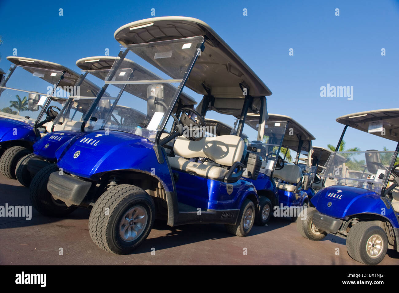 Marriott Doral Golf Resort & Spa , Miami , Florida , USA , golf buggies by Blue Monster 1st tee - Stock Image