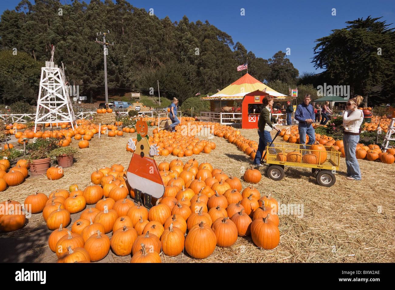 Half Moon Bay Pumpkin Festival 2020.Half Moon Bay Ca Stock Photos Half Moon Bay Ca Stock