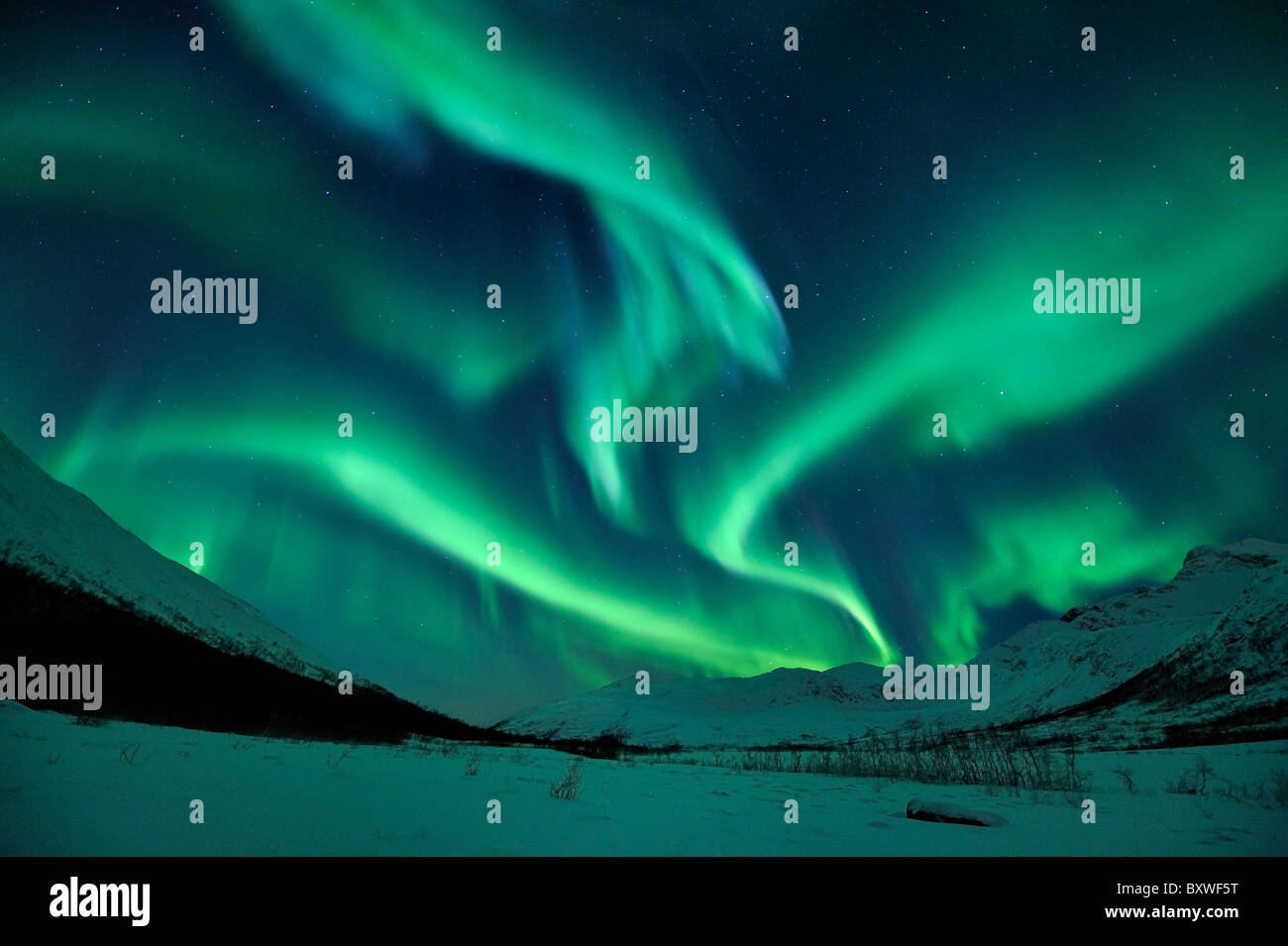 Northern Lights (Aurora Borealis) in North Norway Stock Photo