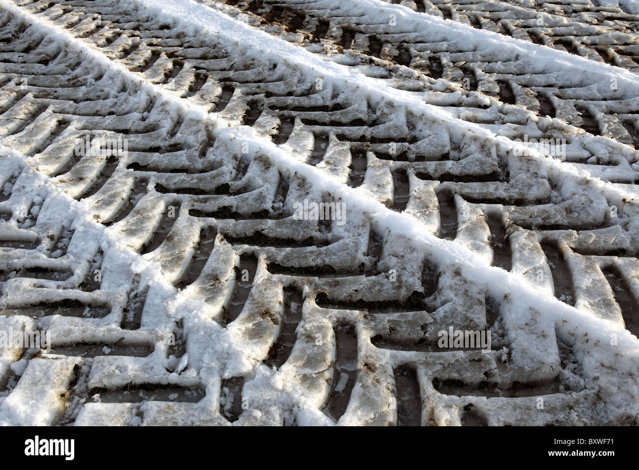 Tyre tracks in the snow and ice - Stock Image