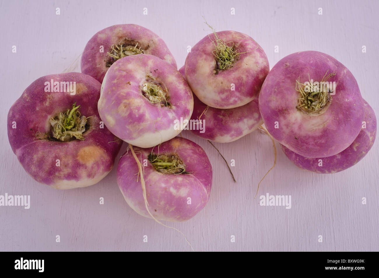 Pink turnips on pink surface - Stock Image