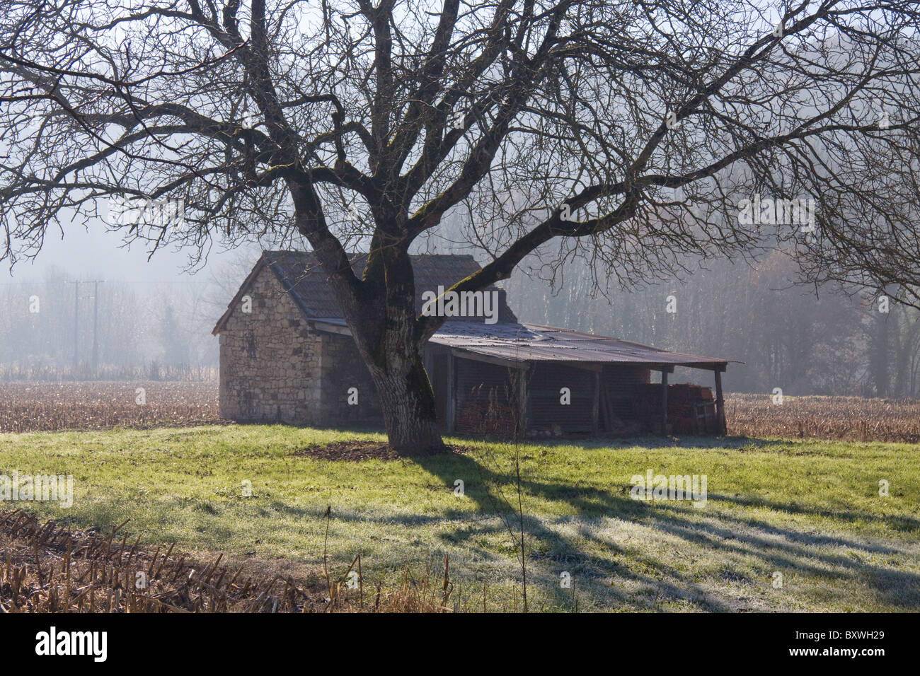 Agricultural building on a smallholding - Stock Image