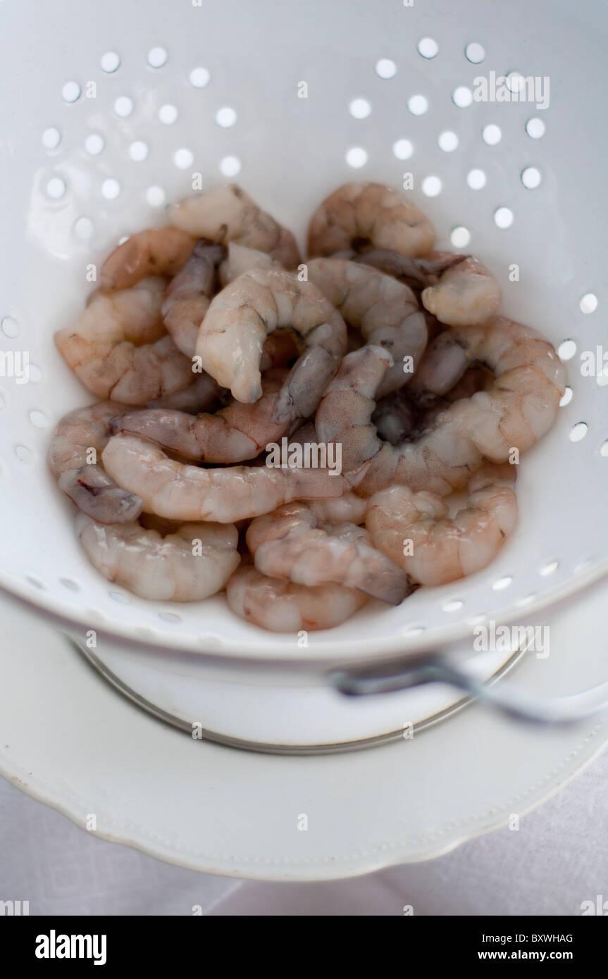 Raw hot water prawns draining in white enamel colander - Stock Image