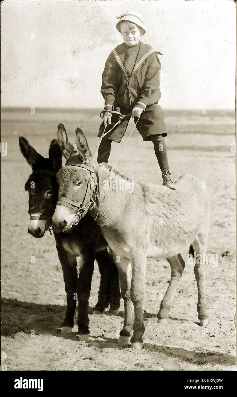 Boy in sailor suit standing on two burros. c. 1910 - Stock Image
