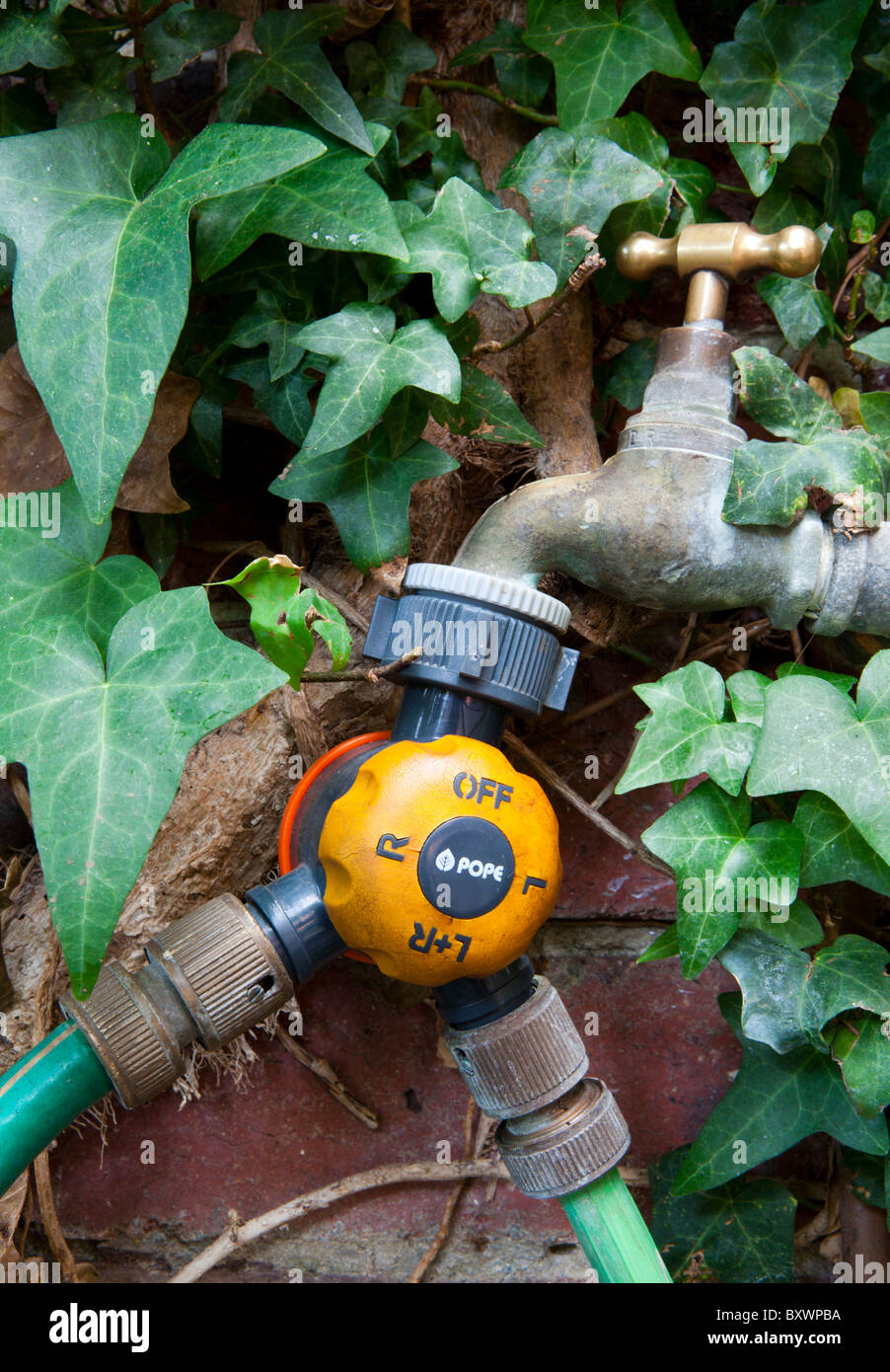 Two way tap splitter connecting an outdoor tap to two hosepipes. - Stock Image