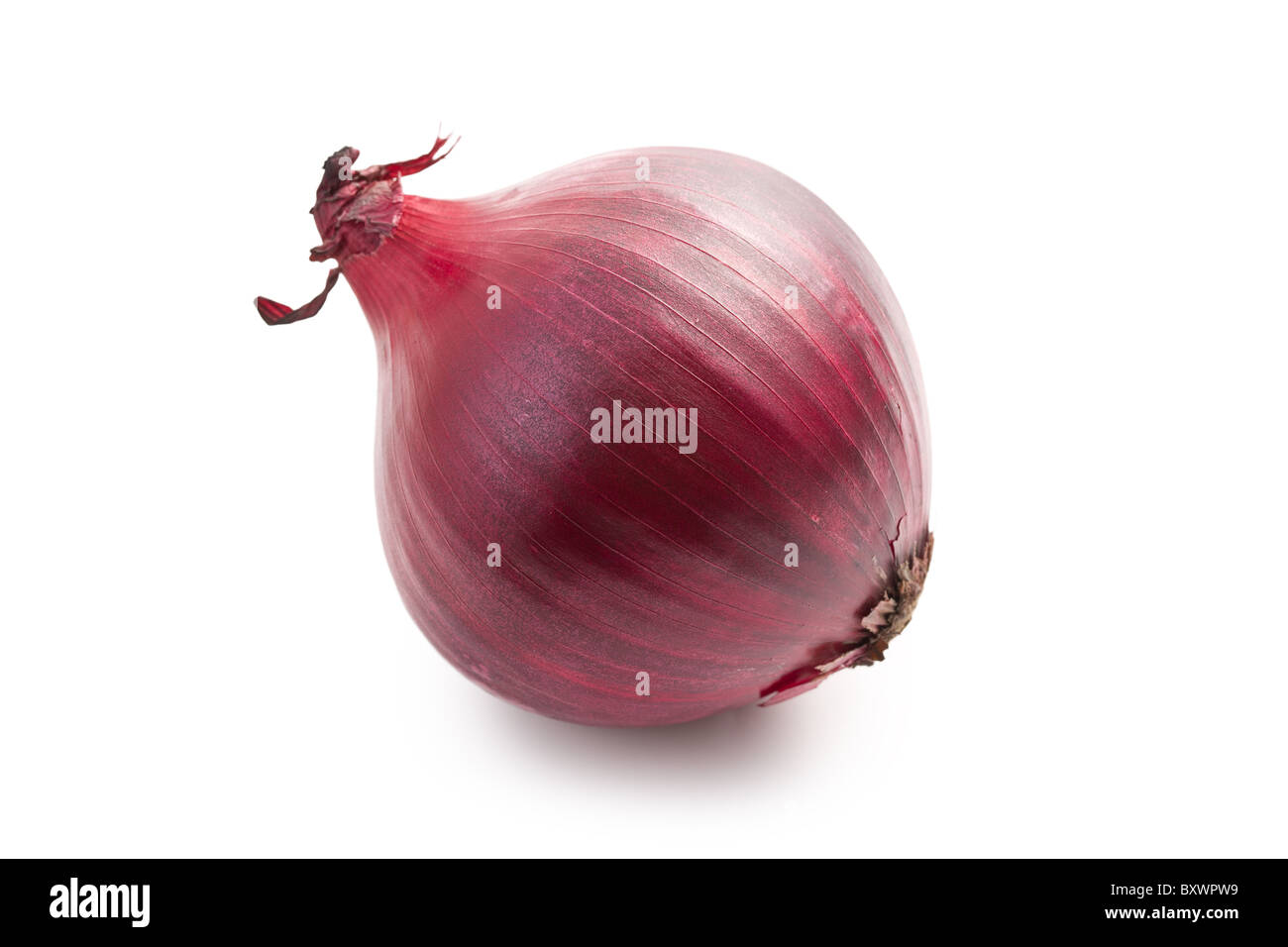 red onion isolated on white background - Stock Image