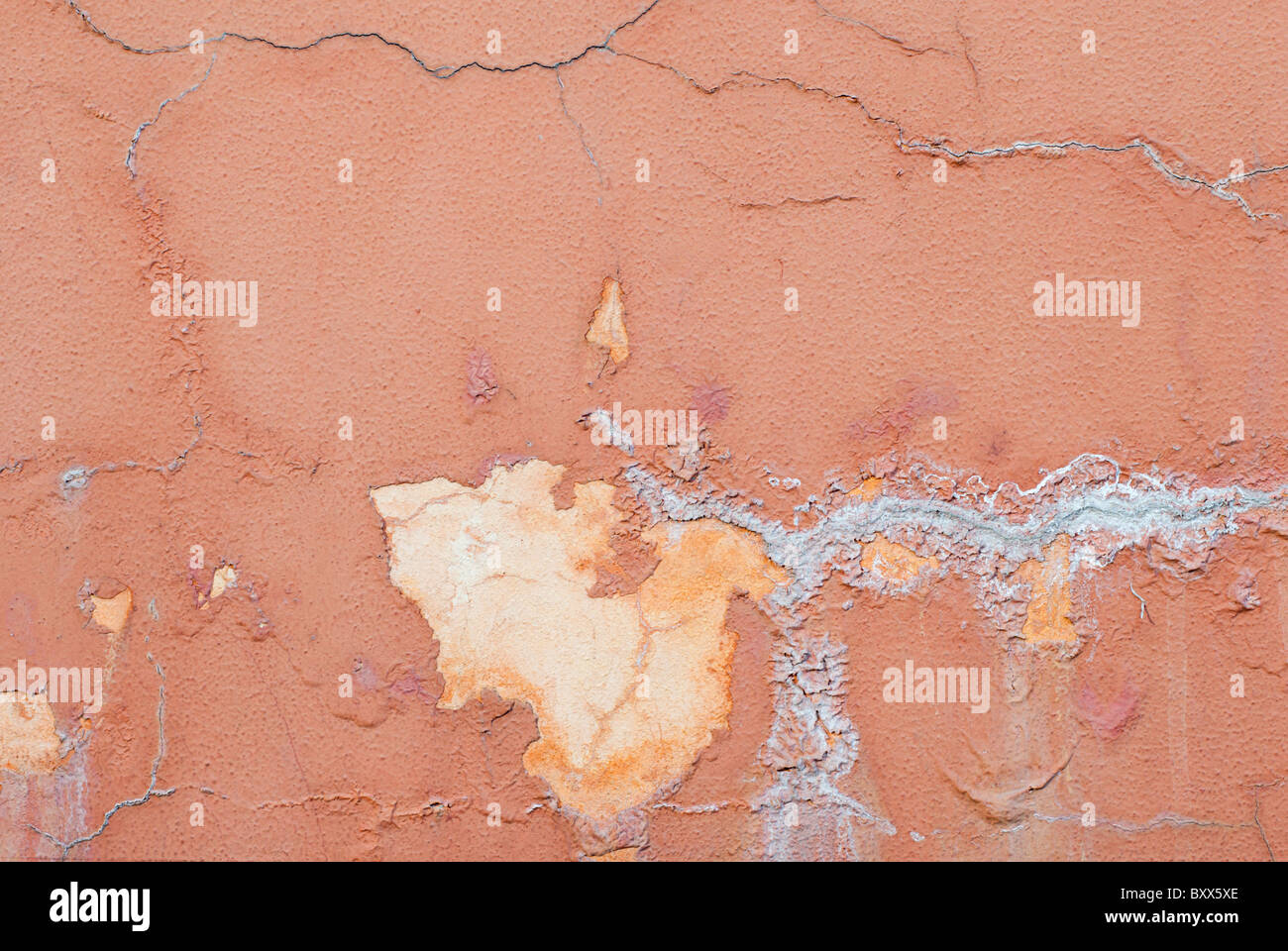 detail of a concrete wall with humidity traced, white mold and several cracks - Stock Image