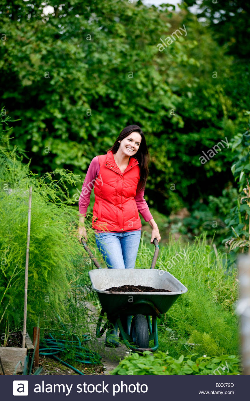 A young woman pushing a wheelbarrow on an allotment - Stock Image