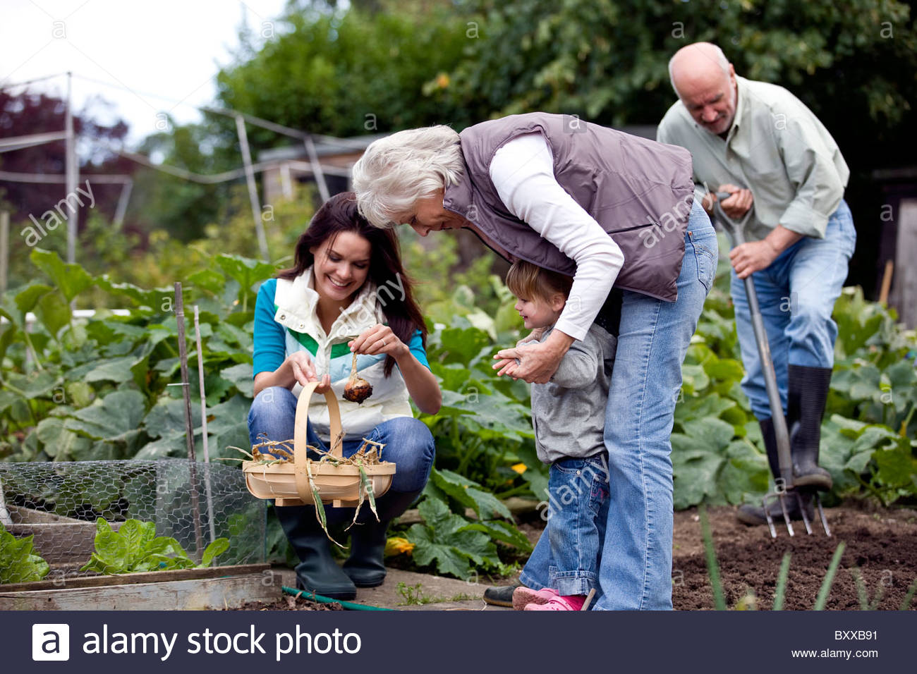 A family working on an allotment together Stock Photo