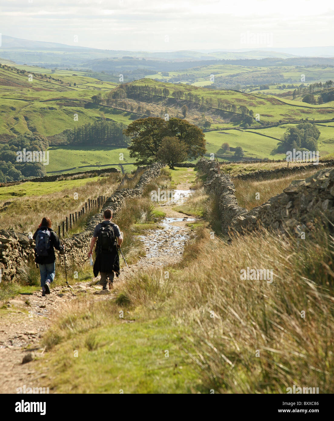 Two walkers or hikers walking down Nanny Lane towards Troutbeck in the English Lake District England UK - Stock Image