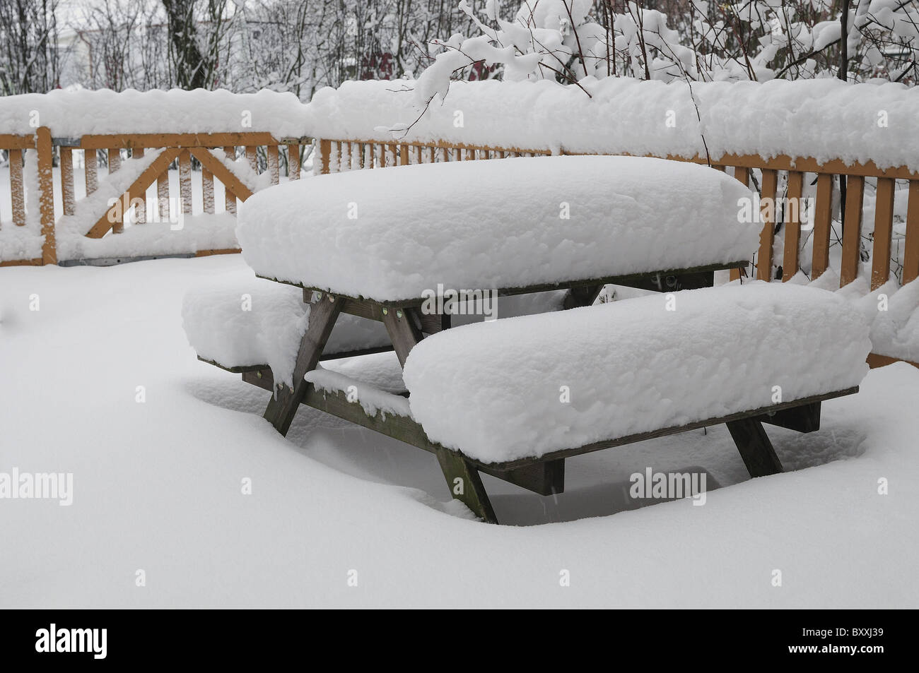 Beautiful winter in southern Sweden - Stock Image