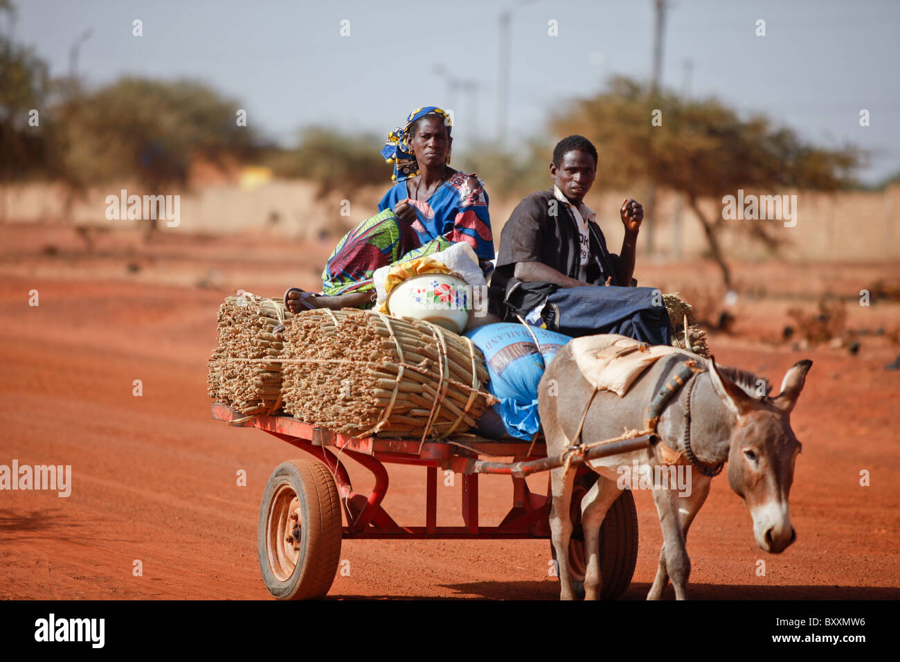 A family brings harvested millet to market by donkey cart in Djibo, Burkina Faso. - Stock Image
