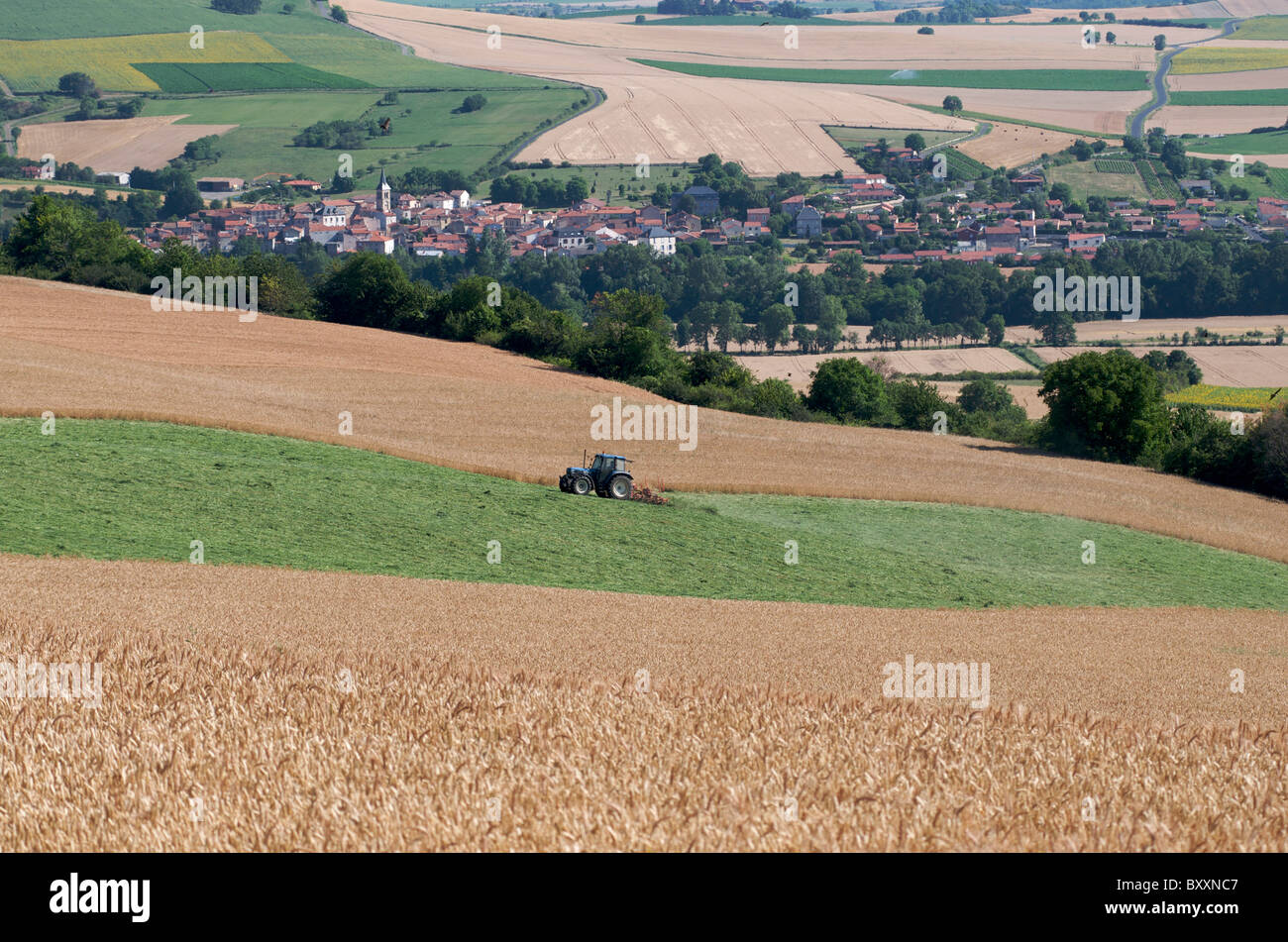 Tractor in a wheatfield in the plain  in Auvergne. France. - Stock Image